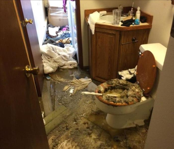 Sewage Damage in Lynnwood Home Before