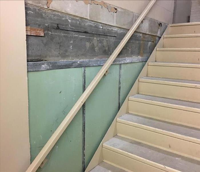 Mold In Condominium Stairwell  After