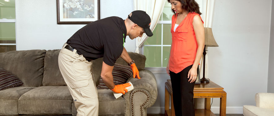 Edmonds, WA carpet upholstery cleaning